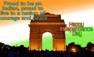 india gate, india gate flag, flag independence day, national flag india, 15th august